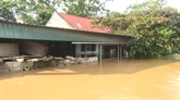 Le changement climatique et les efforts dadaptation du Vietnam