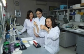 L'Institut génétique médical, nouvelle maison commune des décrypteurs d'ADN