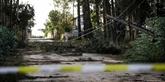 La tempête Leslie frappe le Portugal et s'essouffle en atteignant l'Espagne