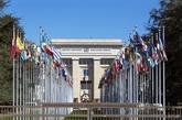 L'ONU célèbre ses 73 ans