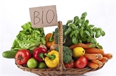 Hâu Giang et FACT de la R. de Corée poursuivent leur coopération dans des produits bio