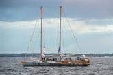 Retour de l'expédition Tara après deux ans et demi à explorer les fragiles coraux