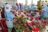 Les exportations de fruits et légumes devrait dépasser 4 milliards de dollars