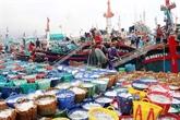 Kiên Giang s'efforcent de lutter contre la pêche INN