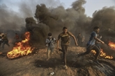 Gaza: 29 Palestiniens blessés dans des affrontements avec les soldats israéliens