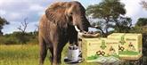 Café d'éléphant du Tây Nguyên, un label de poids