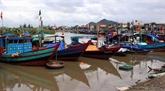 Lutte contre la pêche illicite: la délégation du PE salue les efforts du Vietnam