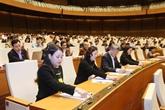 L'AN adopte la résolution sur l'ajustement du plan d'investissement public à moyen terme