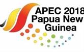 Le Premier ministre Nguyên Xuân Phuc participera au 26e Sommet de l'APEC