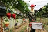 Grande-Bretagne: les entreprises cherchent à attirer la main d'œuvre