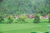 Un village Tày à Tuyên Quang