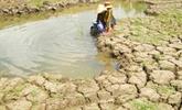 Les Pays-Bas aident à améliorer les capacités d'approvisionnement en eau