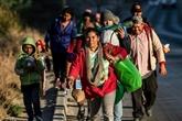 Mexique: plus de 1.500 migrants de la caravane à la frontière américaine