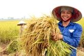 Un projet australien promeut l'égalité des sexes dans l'agriculture