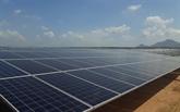 Khanh Hoa envisage de mettre en service des centrales solaires l'année prochaine