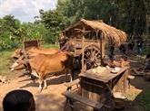 Adaptation de contes de fées vietnamiens en série télévisée