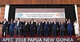Le Vietnam a apporté ses contributions actives à l'APEC 2018