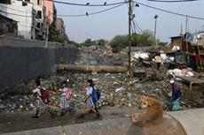La pollution de lair à Delhi coûte dix années despérance de vie