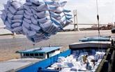 Montée en flèche des exportations de riz en Indonésie en dix mois