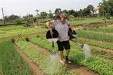 Un séminaire national sur le tourisme rural prévu début décembre à Lai Châu