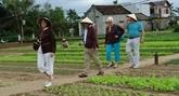 Promotion du tourisme agricole à Hô Chi Minh-Ville