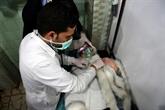 Syrie: attaque au