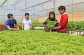 Le PM Nguyên Xuân Phuc: Nécessité de développer l'économie agricole