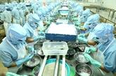 An Giang vise plus d'un milliard de dollars d'exportation en 2030