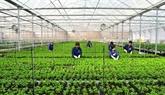 Agronomie: des étudiants de Dà Lat envoyés en Israël