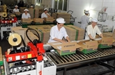 Les entreprises vietnamiennes explorent le marché de l'ASEAN