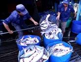Les exportations de produits agro-sylvo-aquacoles en hausse
