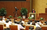 Les projets de loi sur l'amnistie et l'élevage en débat