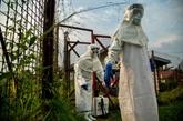Ebola en RDC: les enfants présentent plus d'un tiers des cas