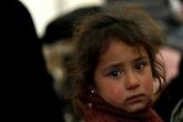 En Syrie, des milliers fuient un fief de l'EI, tenaillés par la faim et les combats