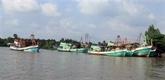 Le Vietnam met tout en œuvre pour une pêche durable