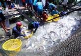 La sylviculture et l'aquaculture visent 20 milliards de dollars d'exportations en 2019