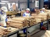 Les échanges commerciaux Vietnam - Afrique du Sud atteindra 2 milliards de dollars