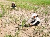 Le Vietnam à une table ronde sur le changement climatique et la sécurité aux Pays-Bas
