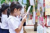 Jolis rêves d'enfants vietnamiens