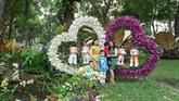 Ouverture du Festival des fleurs du printemps au parc Tao Dàn