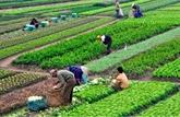Le Vietnam et la France partagent leurs expériences en agriculture biologique