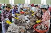 Hausse de 15,6% des exportations de produits aquatiques en janvier