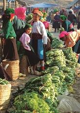 Les couleurs du printemps envahissent les marchés des régions montagneuses