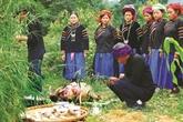 La fête du culte du Génie de la forêt des Pu Péo