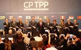 Le CPTPP stimulera la coopération économique et commerciale Vietnam - Chili
