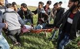 Des dizaines de blessés dans des affrontements avec des soldats israéliens en Cisjordanie