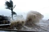 Le Vietnam célèbre le 50e anniversaire du Comité des typhons