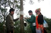 Les compagnies vietnamiennes de caoutchouc saluées à Kampong Thom