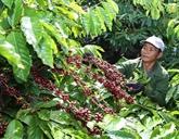 P4G : renforcer le partenariat pour une croissance verte