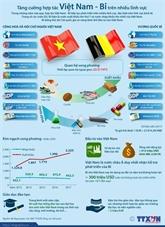 Échange des messages de félicitations entre le Vietnam et la Belgique